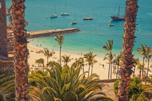 Gran Canaria Digital Nomad